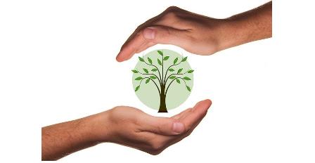 ¿Qué es eco-friendly?